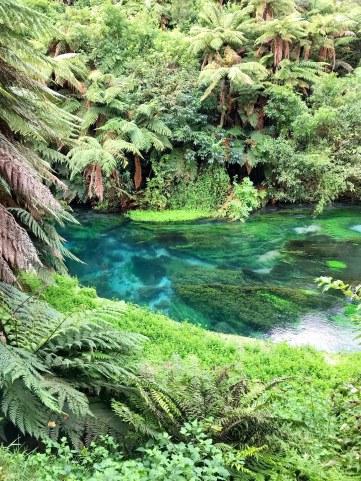 Blue-Springs