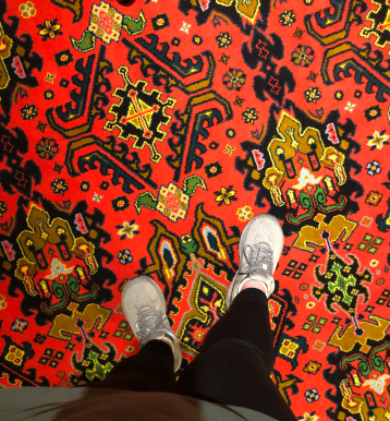 The carpet in the hallways